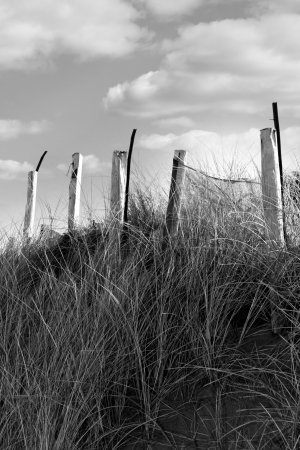 wooden fence on the top of sand dunes of county Donegal, Ireland in black and white photo