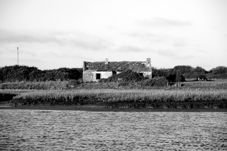 an old abandoned Irish rustic cottage on a river Shannon estuary in county Kerry photo