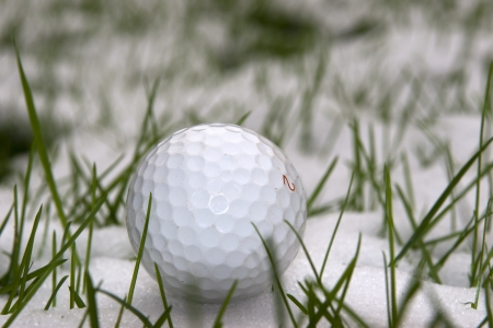 winter sports: a lone single golf ball in the snow covered grass in Ireland at winter