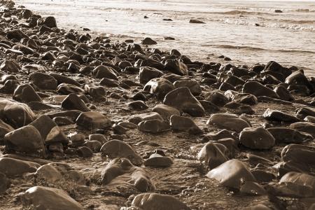 rocky coastline of a county Kerry beach on Irelands west coast in sepia photo