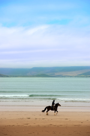 horse and rider at the maharees a beautiful beach in county Kerry Ireland photo