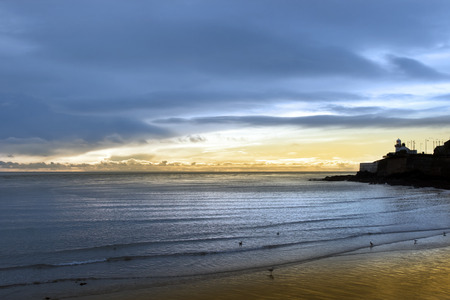 youghal: birds on the beach in Youghal county Cork Ireland with lighthouse in the background