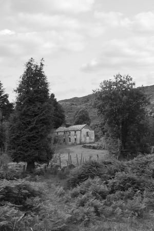 abandoned farmhouse abandoned farmhouse: old abandoned farmhouse in the mountains of county Kerry Ireland in black and white
