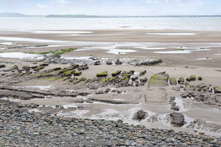 unusual mud banks at Beal beach in county Kerry Ireland on the wild Atlantic way photo