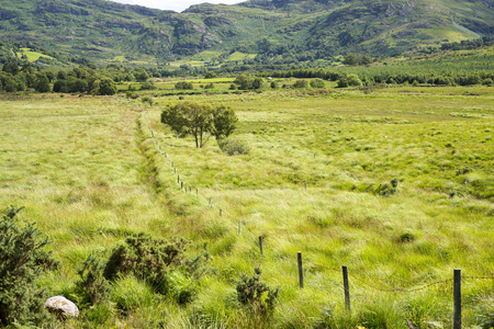 leading the way: view from a beautiful hiking route the kerry way in ireland of fence leading to rocky mountains Stock Photo