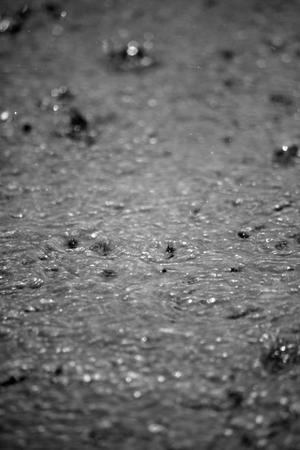 torrential: torrential rain splashing on the tarmac