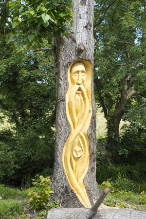 bark carving: bearded man tree engraving in tarbert park on the wild atlantic way ireland Stock Photo
