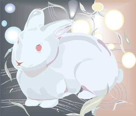 bunnie: white bunnie on abstract background