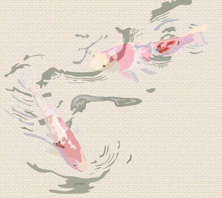 koi fish on textured background Vector