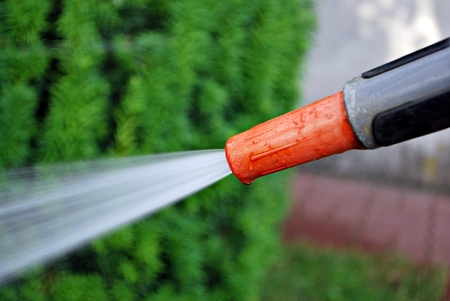Spraying water from a garden hose