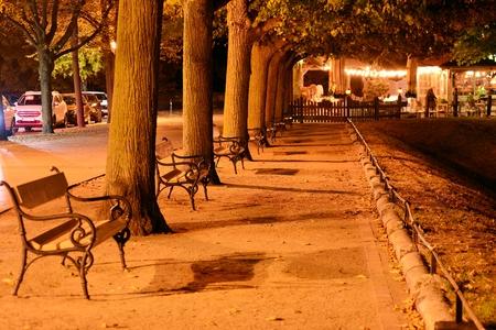 Alley in the park with lighting lamps. Romantic scene. Foto de archivo