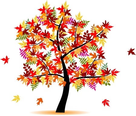 seasonal symbol: 4 seasons tree - autumn