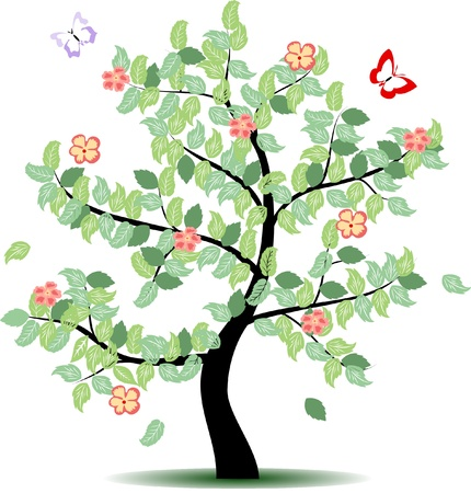 4 seasons tree - summer Stock Vector - 11216272