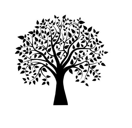 벡터 나무 검은 색과 흰색 일러스트