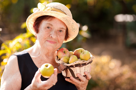 Smiling senior woman holding basket with apples in garden. Looking at camera. 60s.  Stock Photo