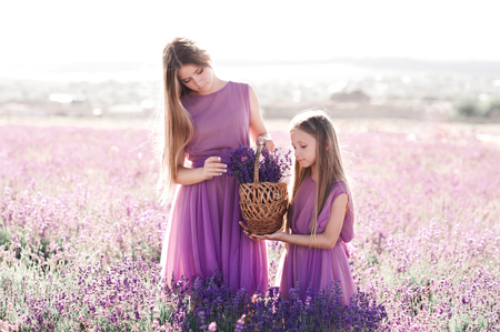 2 つのブロンドの女の子 14-16 と 4-5 歳は、ラベンダー畑で花のバスケットを保持しているスタイリッシュな紫のドレスを着てください。夏の時間。友