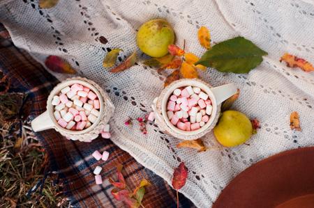 2 つのカップのコーヒー、マシュマロ ニット カバー屋外の緑のリンゴに。屋外のピクニック。平面図です。