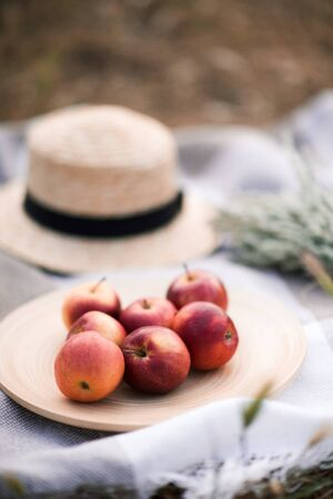 Red ripe apples on wooden plate. Picnic outdoors.