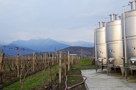 grape vines: Small wine factory in Kakheti region, Georgia.