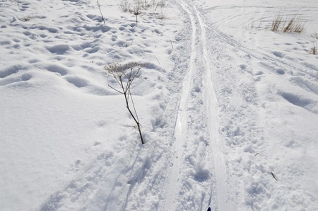 ski runs: Ski trail in fluffi white snow near Lake Baikal