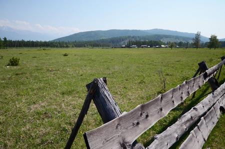 Summer pasture in the foothill of East Sayan Mountains, Buryatia, Tunkinskaya valley