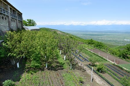 Farm with garden in territory of Bodbe nunnery of Saint Nino, abode of holy enlightener of Georgia 写真素材 - 135062953