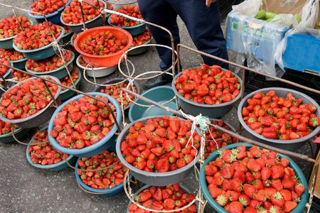 Large ripe red strawberries in large cups at grocery market in Yerevan, Armenia