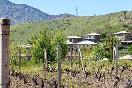 Famous winery village of Areni, in which old winemakers carefully preserve ancient secrets of wine making