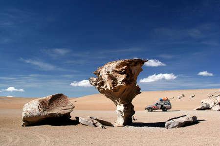 Stone Tree in the Desert photo