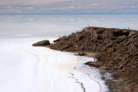 salar de uyuni: Cactus Island, Salar de Uyuni