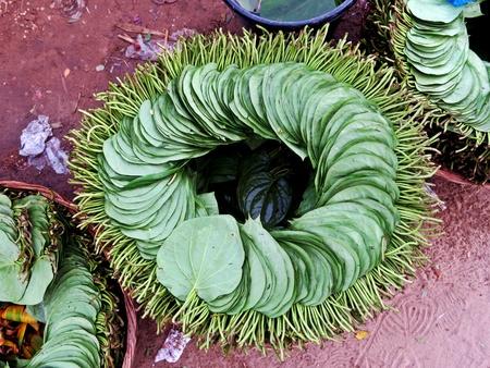 Paan, Betel leaves, stimulant