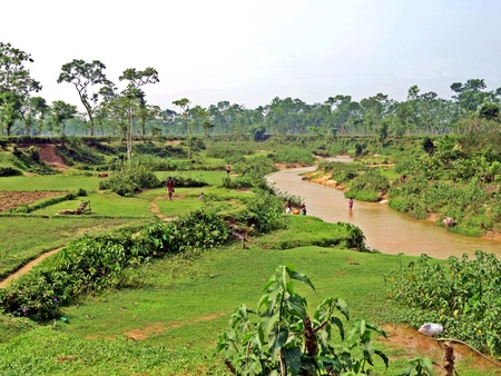 the district of Srimangal is home to Bangladesh most important tea plantations Foto de archivo - 104664470