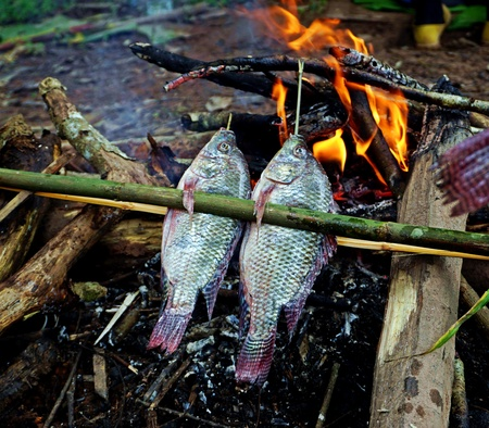 In Laos freshwater fish is part of the local staple food. Mostly sold in the markets as dried fish or still alive. Fish barbeque is common all over Laos. 免版税图像 - 109259909