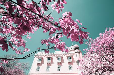 Pena National Palace (Palacio Nacional da Pena) - Romanticist palace in Sao Pedro de Penaferrim. Sintra, Portugal. Palace is a UNESCO World Heritage Site and one of Seven Wonders of Portugal. Editorial
