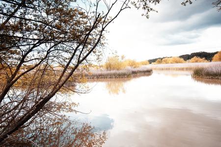 Lagoon of Pateira,Portugal. Stock Photo
