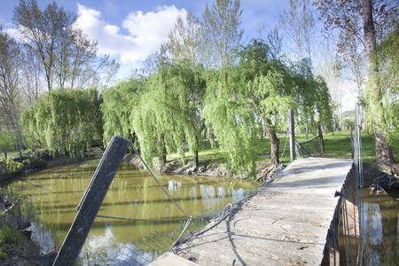 Park of Ois da Ribeira,Portugal.