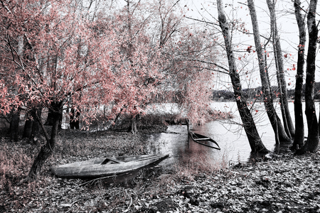 The Magical infrared efex Stock Photo