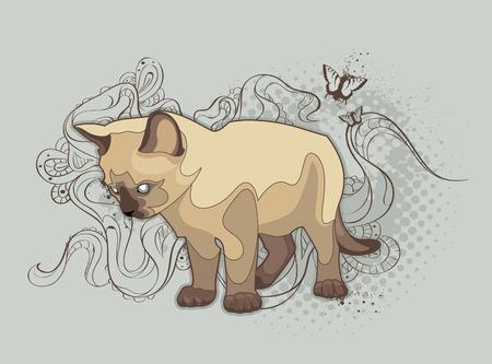 El gato sobre fondo extraño.