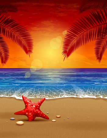 tropical sunset: Sea sunset vector illustration  Paradise beach