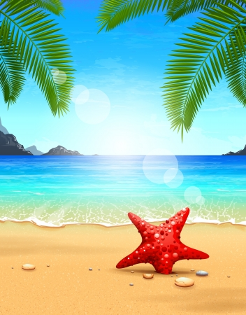 sea stars: Seascape vector illustration  Paradise beach