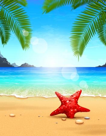 sea star: Seascape vector illustration  Paradise beach