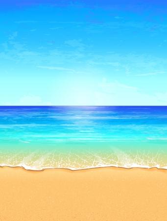 playa: Marina ilustración vectorial Playa Paraíso