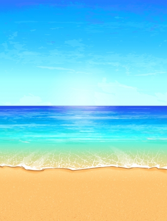 sunny beach: Seascape vector illustration  Paradise beach