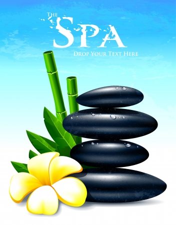 meditation stones: Spa vector illustration with zen stones, flower and leafs  Illustration
