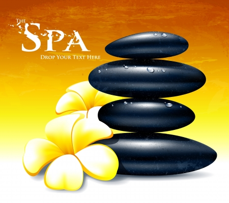 Spa vector illustration with zen stones and flowers  Vector