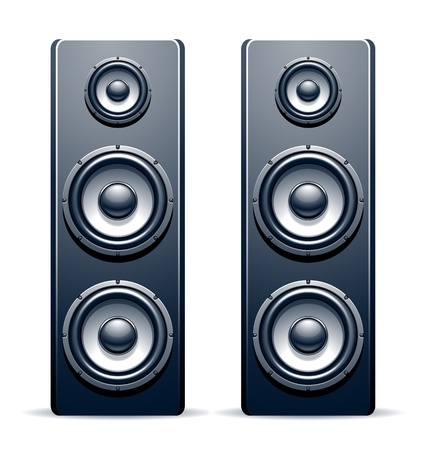 stereo subwoofer: Two audio speakers