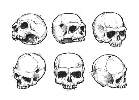 Hand-drawn skulls vector set. Grunge skulls. Vector illustration. Vector