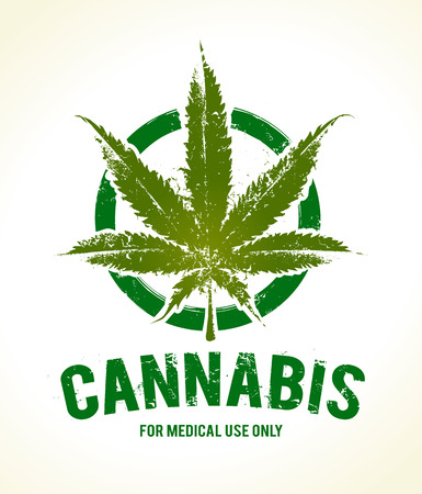 cannabis leaf: Vector cannabis grunge emblem. Illustration