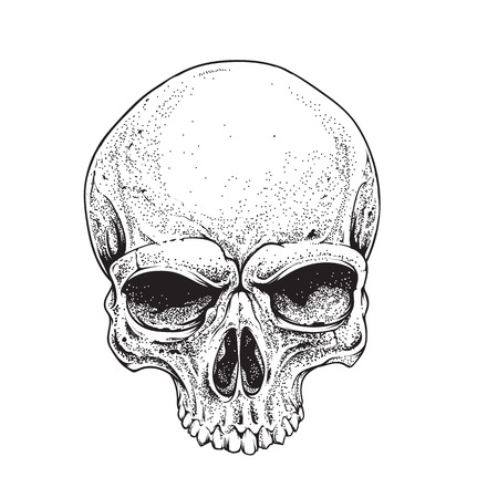 heads: Dotwork styled skull vector art.