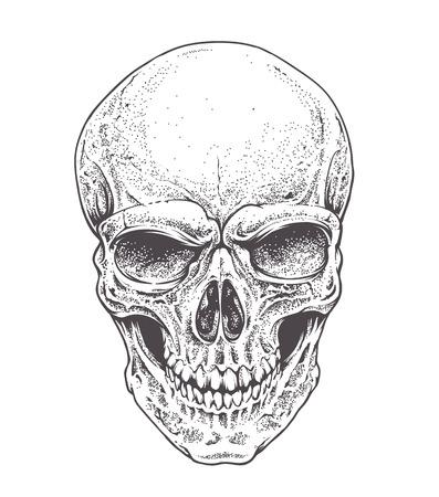skull: Dotwork styled skull vector art.
